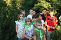 Деский лагерь 2017 - 30